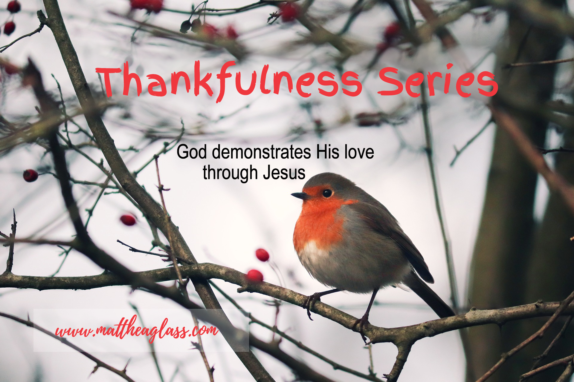 thankfulness series 1